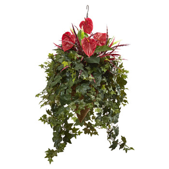 Mixed Anthurium Hanging Basket - SKU #6911