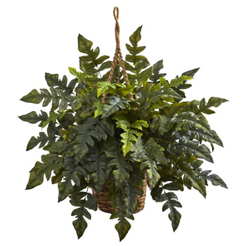 Holly fern Hanging Basket - SKU #6912