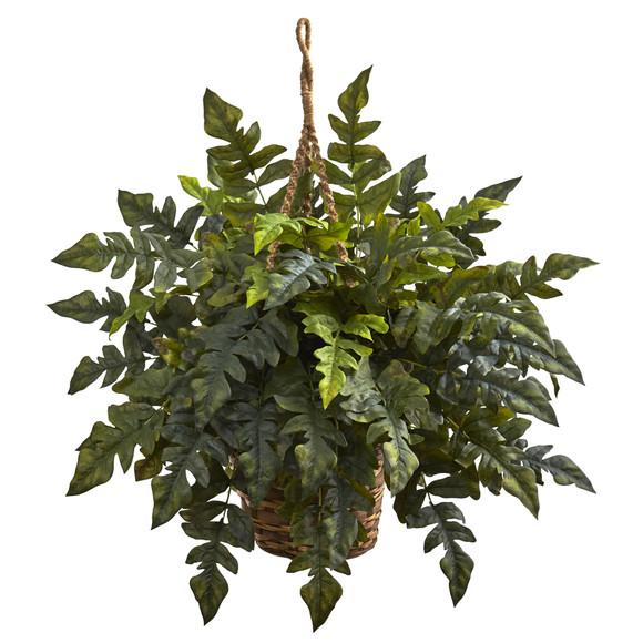 Holly fern Hanging Basket - SKU #6912