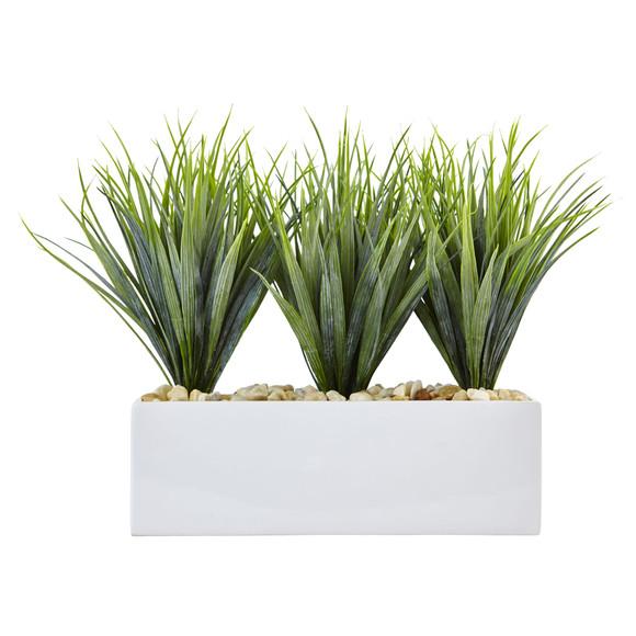 Vanilla Grass in Rectangular Planter - SKU #6915 - 2