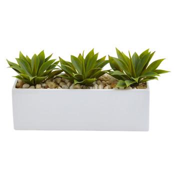 Agave Succulent in Rectangular Planter - SKU #6916