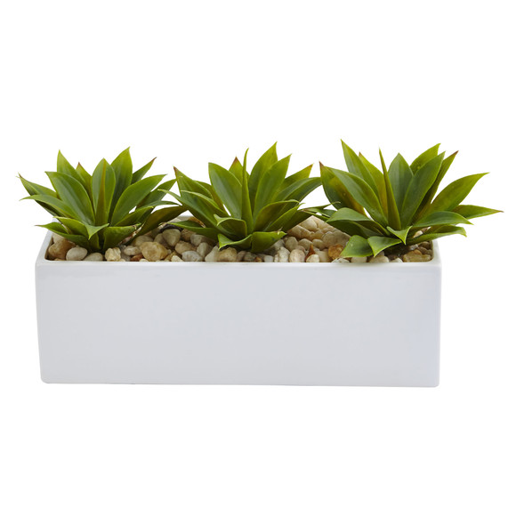 Agave Succulent in Rectangular Planter - SKU #6916