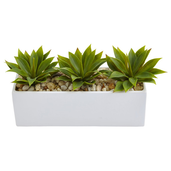 Agave Succulent in Rectangular Planter - SKU #6916 - 1