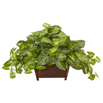 Nephthytis in Wood Planter - SKU #6922