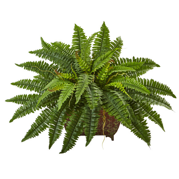 Boston Fern in Metallic Planter - SKU #6933