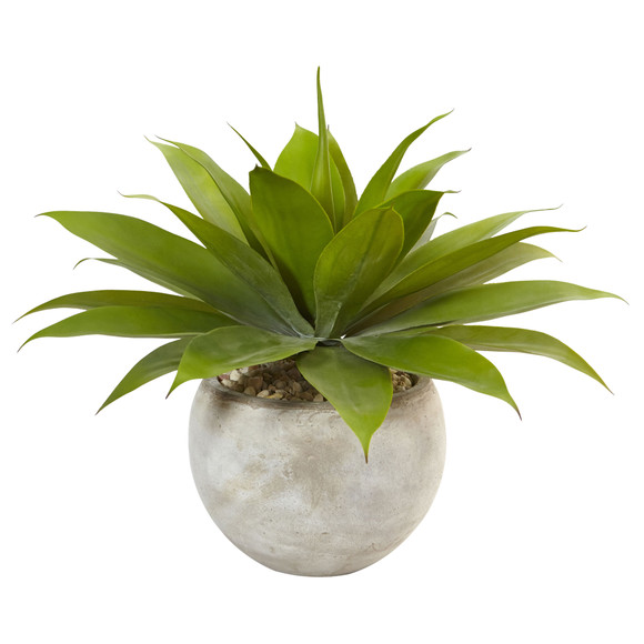 Agave in Sand Colored Bowl - SKU #6959