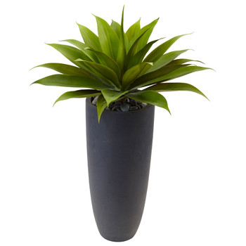 Agave in Gray Cylinder Planter - SKU #6960