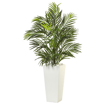 Areca Palm in White Square Planter - SKU #6966