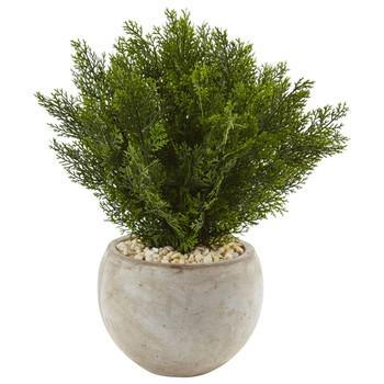 2 Cedar in Sand Colored Bowl - SKU #6990