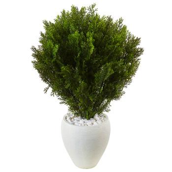 3 Cedar in Oval Textured Planter Indoor/Outdoor - SKU #6992