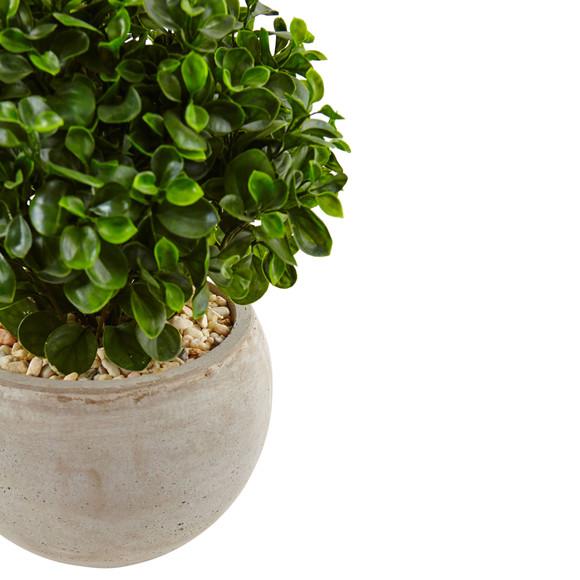 2 Eucalyptus in Sand Colored Bowl UV Resistant Indoor/Outdoor - SKU #6993 - 1