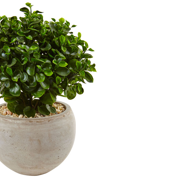 2 Eucalyptus in Sand Colored Bowl UV Resistant Indoor/Outdoor - SKU #6993 - 2