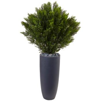 4 Cedar in Cylinder Planter Indoor/Outdoor - SKU #6994