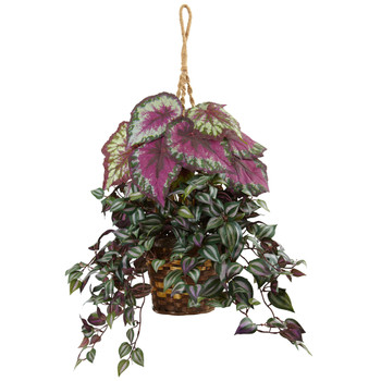 Wandering Jew and Begonia Hanging Basket - SKU #6995