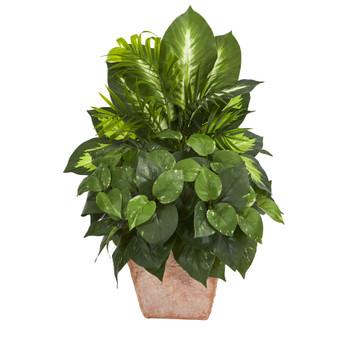 Mix Greens Dish Garden Artificial Plant in Terracotta Planter - SKU #8078