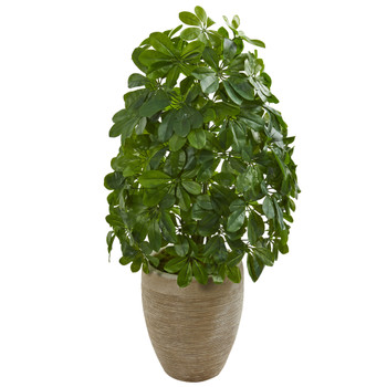 Schefflera Artificial Plant in Sand Colored Planter Real Touch - SKU #8232