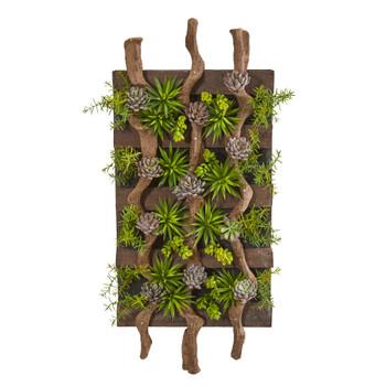 41 x 19 Mixed Succulent Artificial Living Wall - SKU #8321