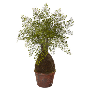 32 Maiden Hair Fern Artificial Plant in Decorative Planter - SKU #8336