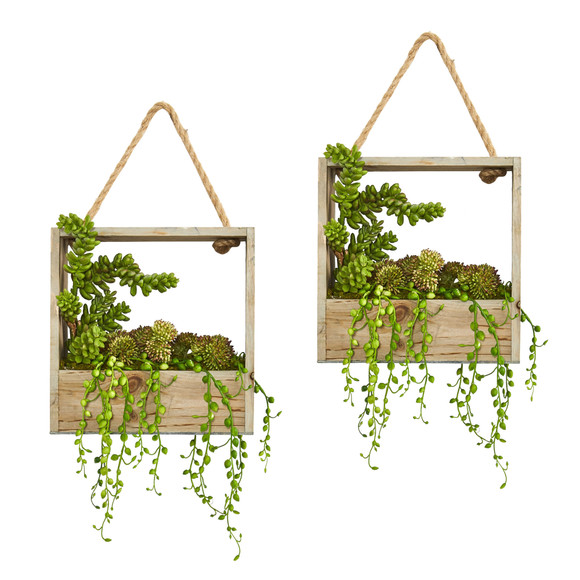 Succulent Garden Artificial Plant in Decorative Hanging Frame Set of 2 - SKU #8366-S2