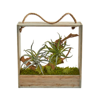 Air Plant Artificial Succulent in Decorative Hanging Frame - SKU #8368