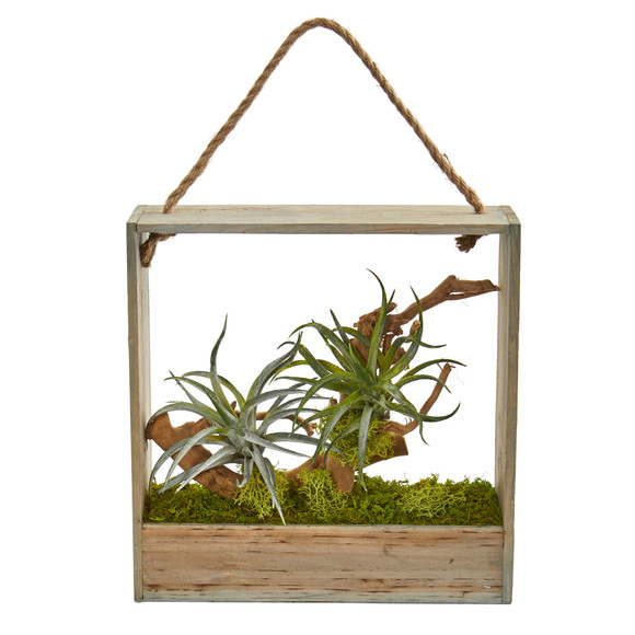 Air Plant Artificial Succulent in Decorative Hanging Frame - SKU #8368 - 1