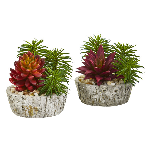 Succulent Artificial Plant in Weathered Oak Planter Set of 2 - SKU #8433-S2
