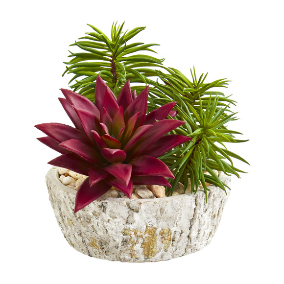 Succulent Artificial Plant in Weathered Oak Planter Set of 2 - SKU #8433-S2 - 1