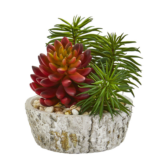 Succulent Artificial Plant in Weathered Oak Planter Set of 2 - SKU #8433-S2 - 2