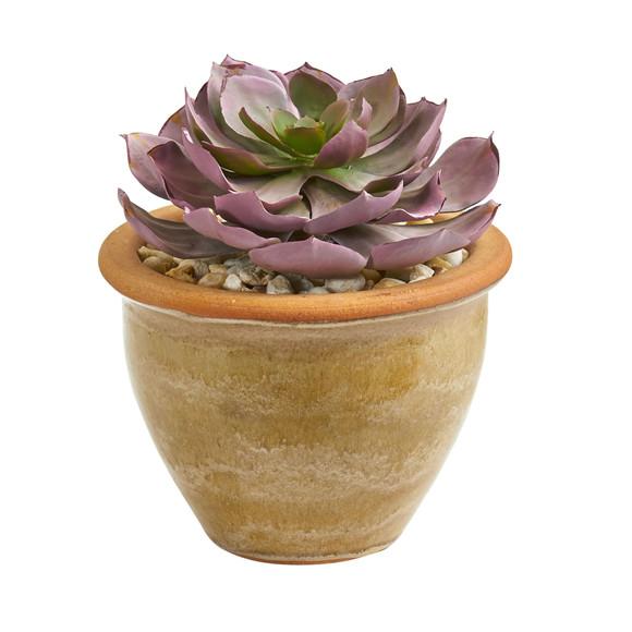 12 Succulent Artificial Plant in Glazed Ceramic Vase Set of 2 - SKU #8453-S2 - 1