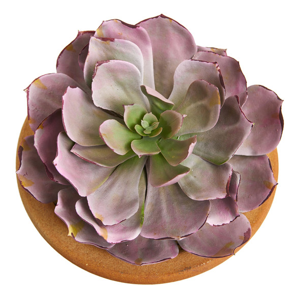 12 Succulent Artificial Plant in Glazed Ceramic Vase Set of 2 - SKU #8453-S2 - 3