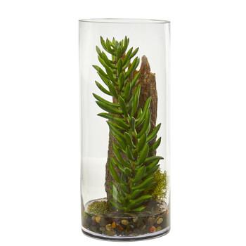 Succulent and Sedum Artificial Plant in Cylinder Vase - SKU #8459