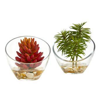 Succulent Artificial Plant in Slanted Glass Vase Set of 2 - SKU #8460-S2
