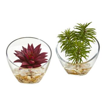 Succulent Artificial Plant in Slanted Glass Vase Set of 2 - SKU #8461-S2
