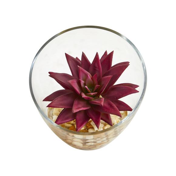 Succulent Artificial Plant in Slanted Glass Vase Set of 2 - SKU #8461-S2 - 2