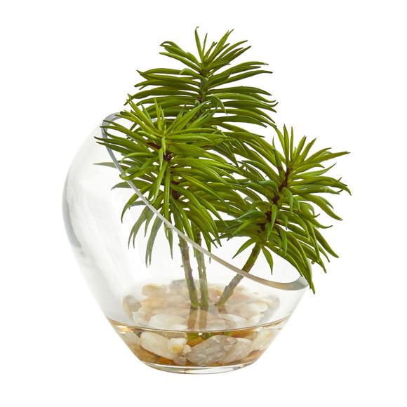 Succulent Artificial Plant in Slanted Glass Vase Set of 2 - SKU #8461-S2 - 3