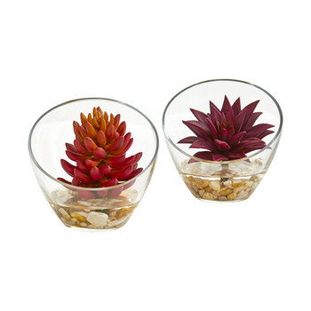 6 Succulent Artificial Plant in Glass Vase Set of 2 - SKU #8462-S2