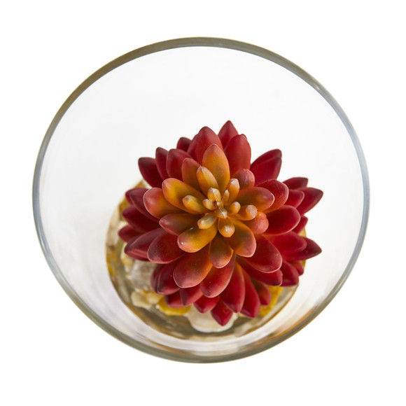 6 Succulent Artificial Plant in Glass Vase Set of 2 - SKU #8462-S2 - 1