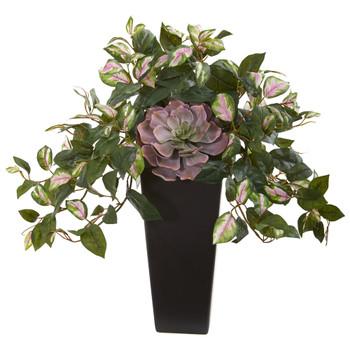 22 Echeveria Succulent and Hoya Artificial Plant in Black Vase - SKU #8496