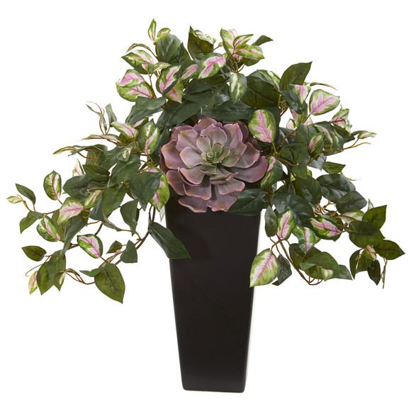 22 Echeveria Succulent and Hoya Artificial Plant in Black Vase - SKU #8496