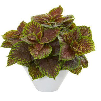 Coleus Artificial Plant in White Planter Real Touch - SKU #8501