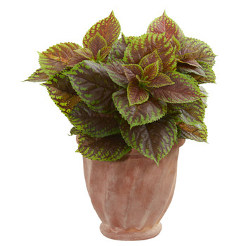 Coleus Artificial Plant in Terra Cotta Planter Real Touch - SKU #8502