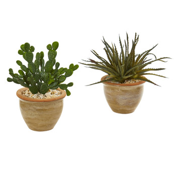 Aloe and Cactus Succulent Artificial Plant Set of 2 - SKU #8517-S2