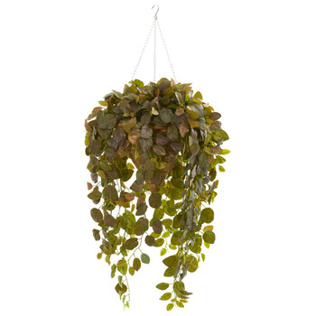 Fittonia Artificial Plant in Hanging Cone Basket Real Touch - SKU #8546-BG