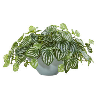 19 Watermelon Peperomia Artificial Plant in Green Vase Real Touch - SKU #8558
