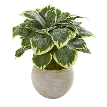 26 Variegated Hosta Artificial Plant in Sand Colored Bowl - SKU #8570