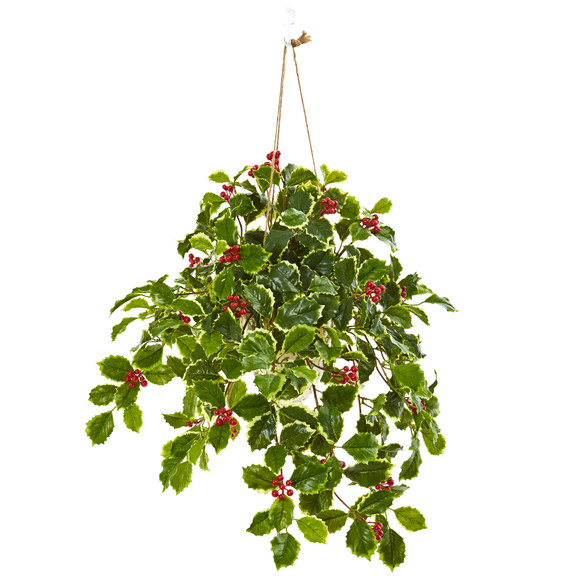 30 Variegated Holly Berry Artificial Plant in Hanging Vase Real Touch - SKU #8592