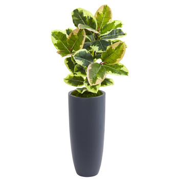 35 Rubber Leaf Artificial Plant in Gray Planter Real Touch - SKU #8716