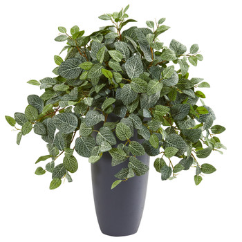 28 Fittonia Artificial Plant in Gray Planter Real Touch - SKU #8729