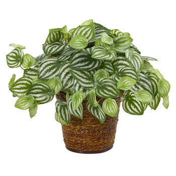 13 Watermelon Peperomia Artificial Plant in Basket Real Touch - SKU #8856