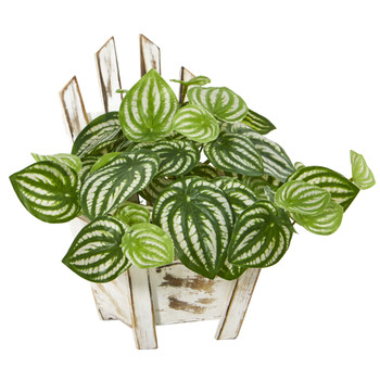 8 Watermelon Peperomia Artificial Plant in Chair Planter Real Touch - SKU #8868